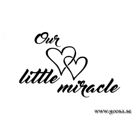 Väggtext - Our little miracle
